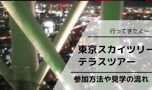 【東京スカイツリーテラスツアー行ってきたよ~】参加方法や見学の流れ
